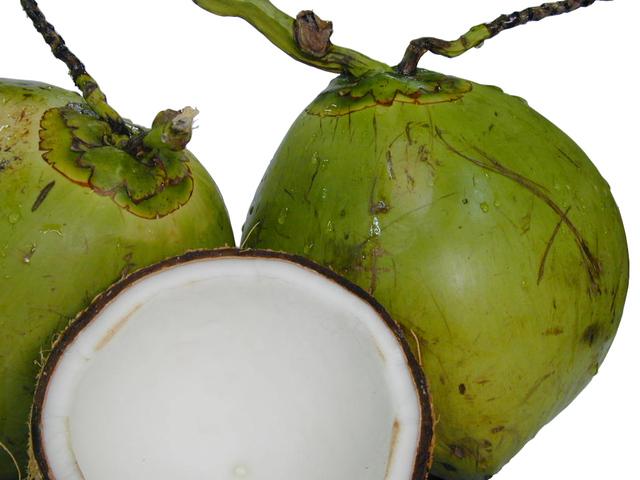 ještě zelený kokosový ořech utržený ze stromu